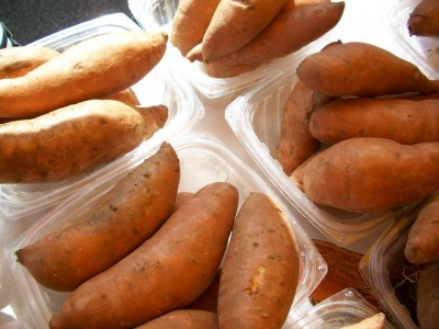sweet-potatoes-996_640